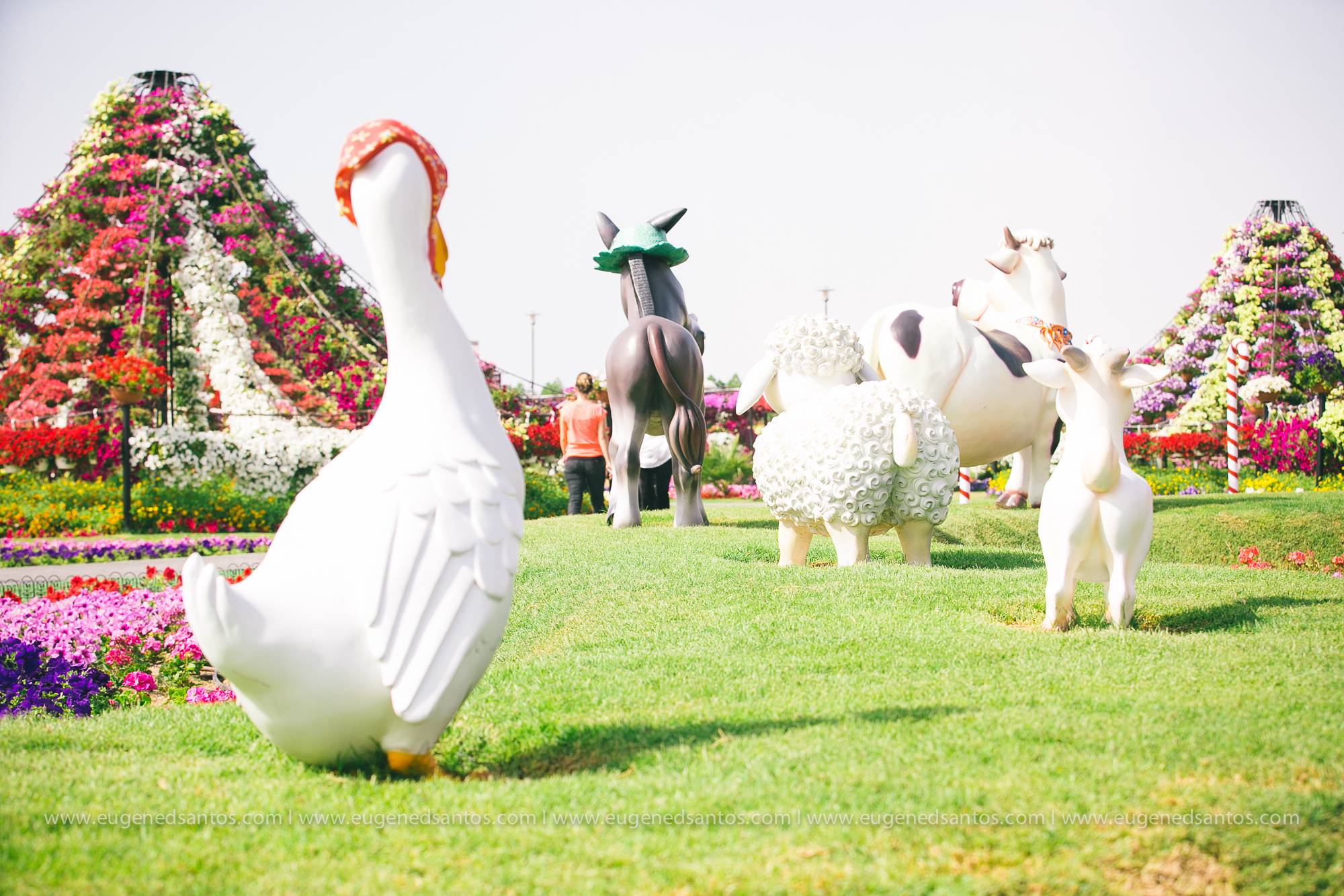 ES - Dubai Wedding Photography DR-12.jpg