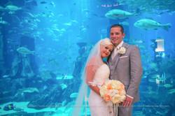 ES Wedding Photography - Atlantis-37.jpg