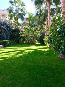 Peyzaj bahçe bakımı
