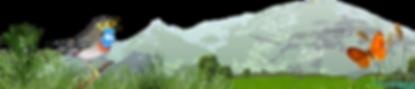 CHAU_montage_blog(3).png