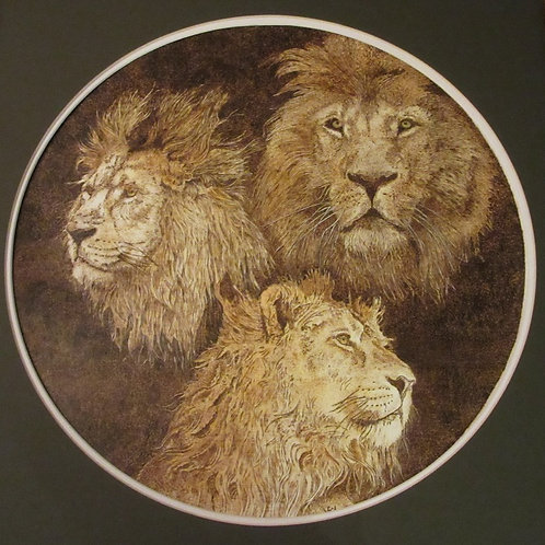 """Three Kings / Lions"""