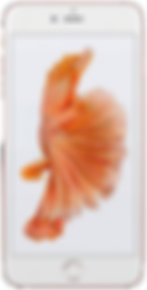 iPhone 6S OK.png