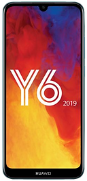 Y6 2019 OK.png