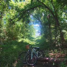 Romanticized life in nature at the campus. 🚲    #campustour #biking #bikelife #woods #katonah #westchester #nature #officehours