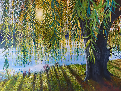 Willow Sunrise