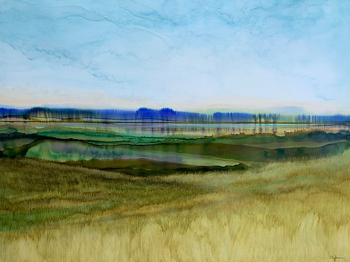 Dynamic Prairie