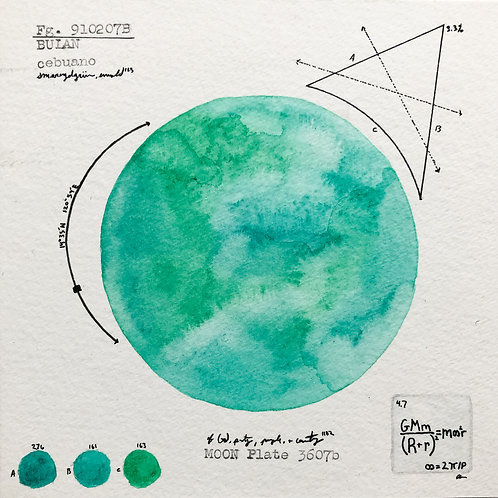 Moon Plate 3607b