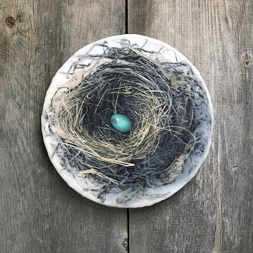 Nest with Robins Egg
