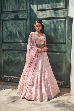 Blush Pink Embroidered Lehenga Set