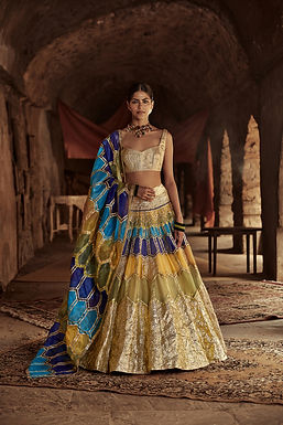 Multicolour And Gold Suraj Mukhi Lehenga Set
