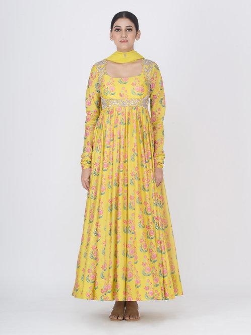 Yellow Chitra Mohak Anarkali