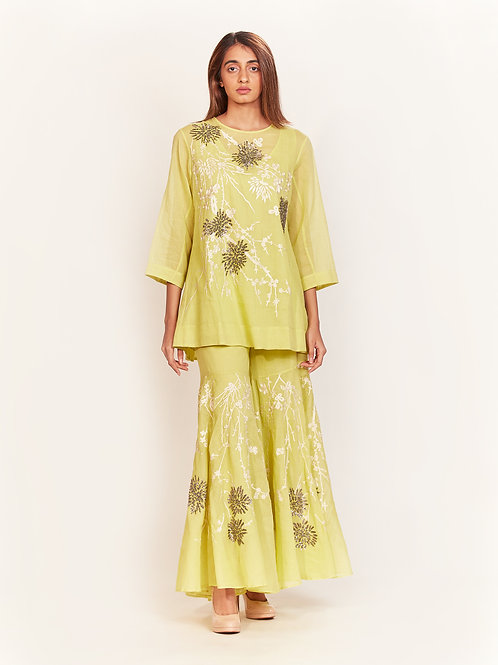 Lime Beaded, Aari Embroidered Top