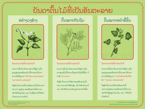 poster_lao.jpg