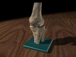 knee-realistic