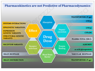 phamacokinetics slides.jpg