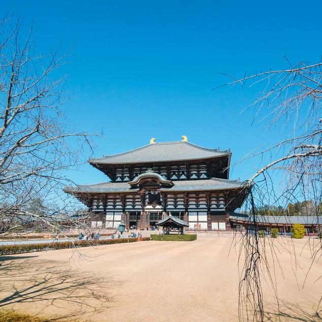 Todai-ji ကို အဝေးက မြင်ရပုံ