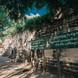 စစ်ကိုင်းမြို့ က တိလောကဂုရုလိုဏ်ဂူတော် နံရံဆေးရေးပန်းချီတွေ ပြုပြင်ထိန်းသိမ်းပြီ