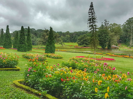 Pyin Oo Lwin National Park Today