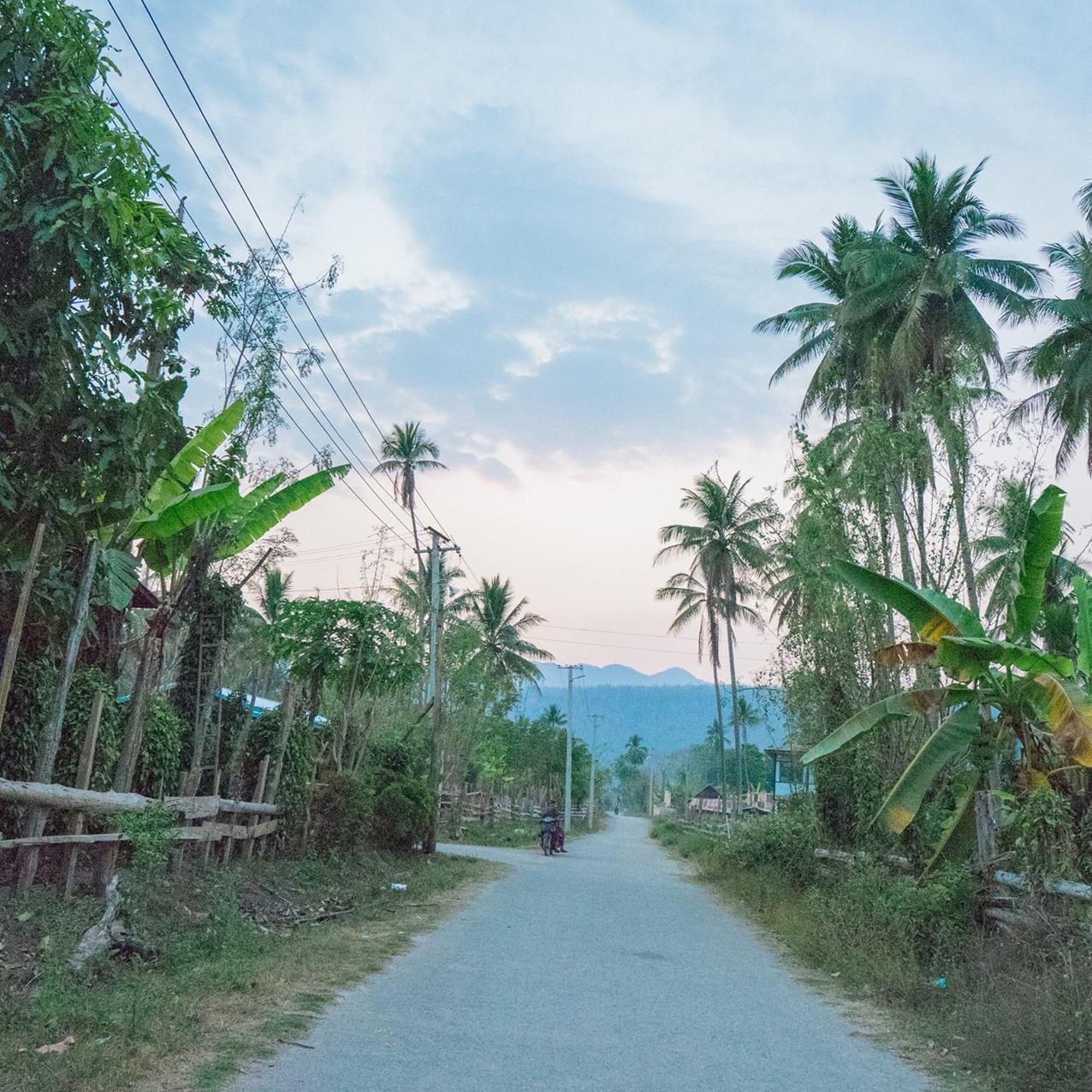 ရွာထဲမှာတော့ ထူးခြားစွာပဲ အုန်းပင်များစွာ ပေါက်နေပါတယ်။ အုန်းပင်တော လိုမျိုးတွေ များလွန်းတော့ ပင်လယ်ကမ်းခြေမြို့လေးနဲ့တောင် သွားတူနေပါသေးတယ်။