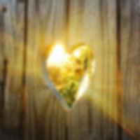 Heart Fence v2.jpg