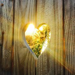 Heart Fence v2