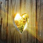 loved up heart.jpg
