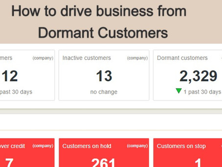 KPI Spotlight Feature: Dormant Customers