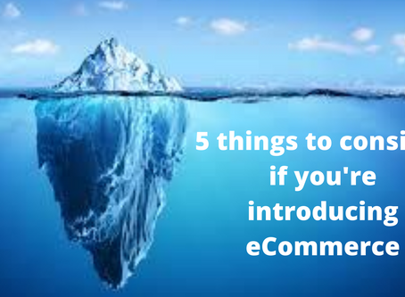 5 things to consider if you're adding eCommerce to your merchant business