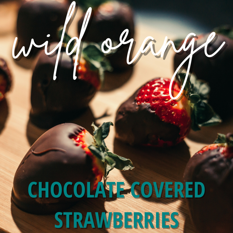 "image of chocolate covered strawberries. ""wild orange chocolate covered strawberries"""