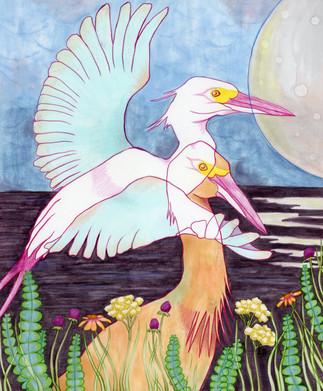 """""""Egrets Flight"""""""