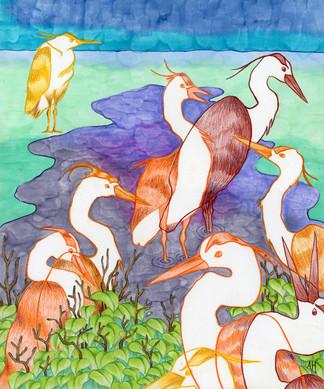 """Heron Splash Party"""