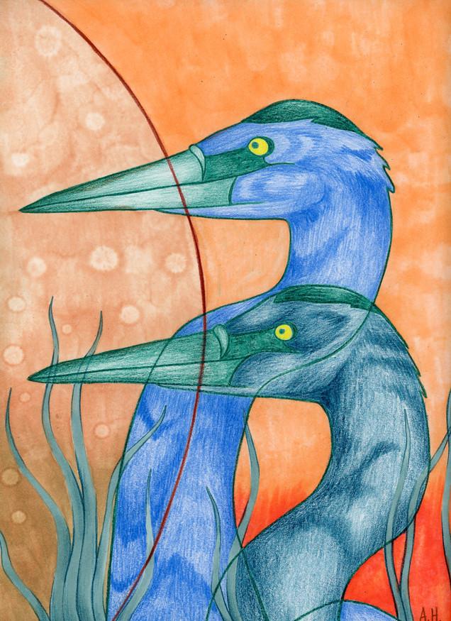 """""""Blue Herons"""""""