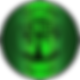 LOGO vert 201 ceragallias.png
