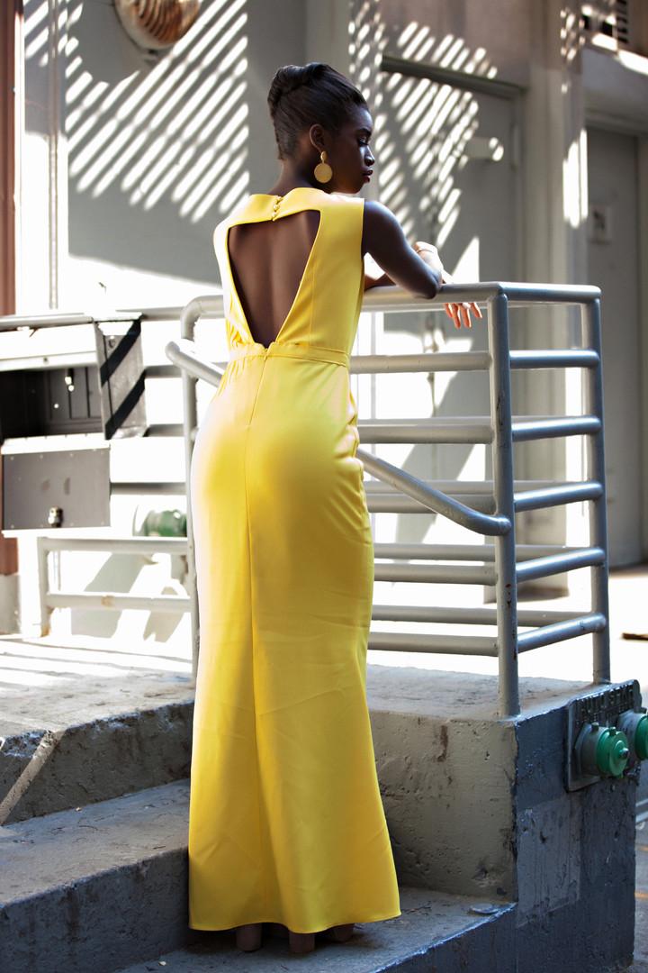 sunny+dress+back.jpg