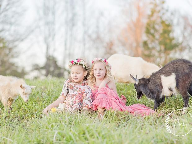 Spring_Goats-42.jpg