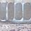 Thumbnail: Holo Glitter
