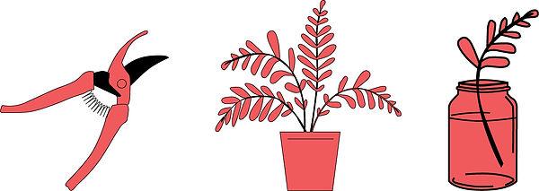 canjoancoworking_plantes.jpg