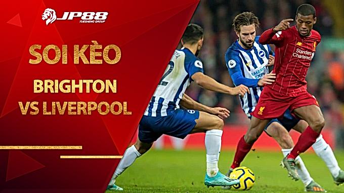 Soi kèo nhà cái Brighton vs Liverpool, 19h30 ngày 28/11, Ngoại hạng Anh