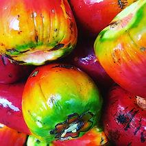 Palm fruit upclose.jpg