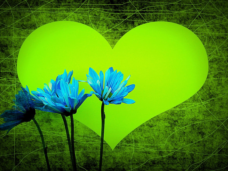 Self-Responsibility & Love