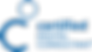 Logo-DigitalConsultants-2019.png