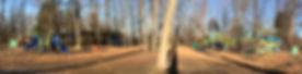 Woodlawn Neighborhood