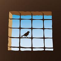 prigione-uccello.jpg