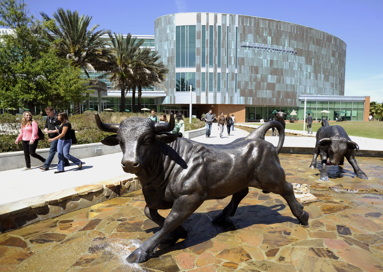 University of South Florida - Tampa, Florida