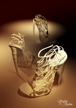 Shoe 3D Model/Print