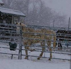 Ten Mistakes To Avoid In The Winter