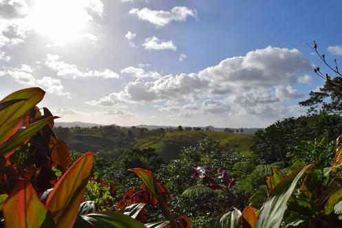 Landscape airbnb retiro.webp