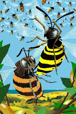 The Bee and Wasp