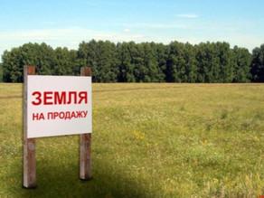На что обращать внимание при покупке земли под ферму