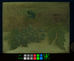 UV-vis, oil painting